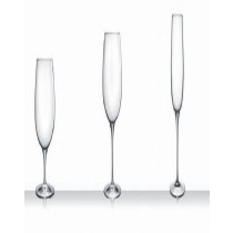 Stemw Palace Flute Glass