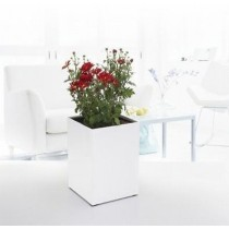 Superior Quality Square Self-Watering Planter