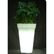 Warm White Square Shape With Border LED Planter 1