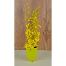 Yellow Color Polyester Pot