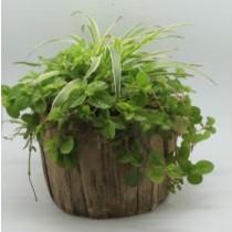 Natural Wood Finish 24 Cm Fiberglass Pots