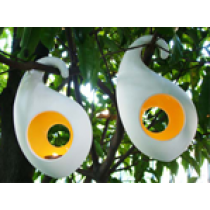 Flashing Fruit Hanging Candle Holder-Oval-Small