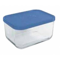 Igloo Rett Blue Storage Box