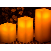 LED candle light with 2 Remote control