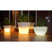 Natural Virgin planter With LED Light Height 1200mm