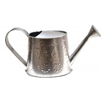 Large Size Silver Embossed  Watercan