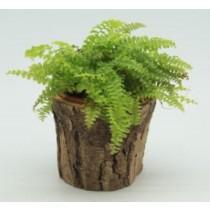 Natural Wood Finish 12 Cm Fiberglass Pots