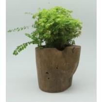 Natural Wood Finish 15 Inch Fiber Glass Pots