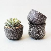 Set Of 3 Pcs Simple Style Ceramic Planter