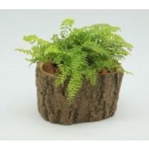 Natural Wood Finish 10 Cm Fiberglass Pots